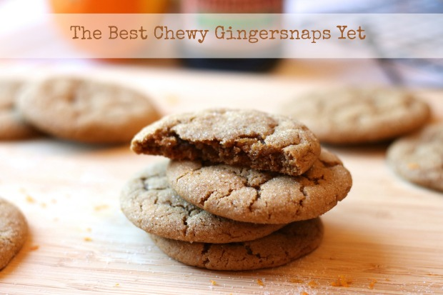 The Best Chewy Gingersnaps Yet